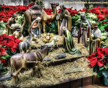Nativity Scene, statues, beautiful