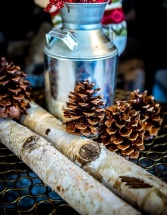 1-Christmas-pinecones-1073758_960_720
