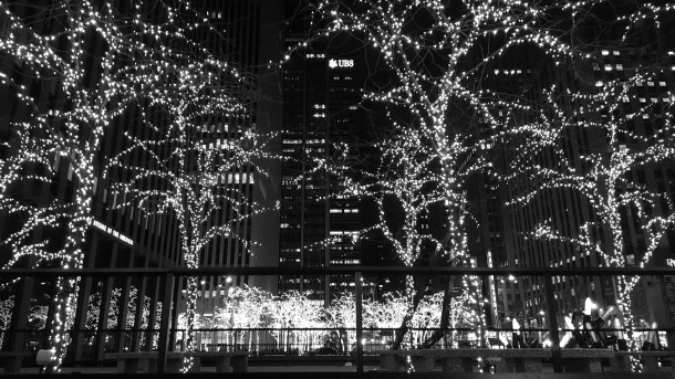 NYC Lights of Trees at Night
